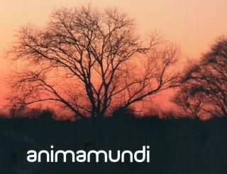 animamundi(1)
